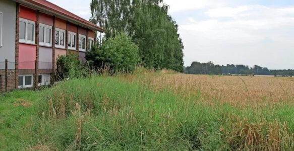 Neue Pläne: Am Benther Sportplatz könnte eine Kita entstehen